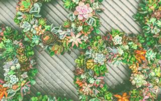 unique-front-door-wreaths
