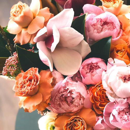 pink-and-orange-flowers