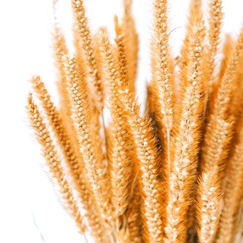 wheat-wreath